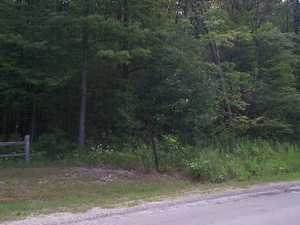 Residential Lot in Alanson