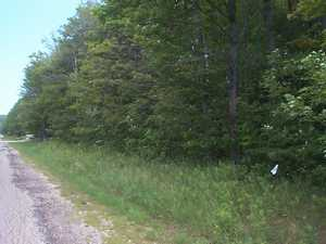 Residential Lot For Sale in Alanson Michigan